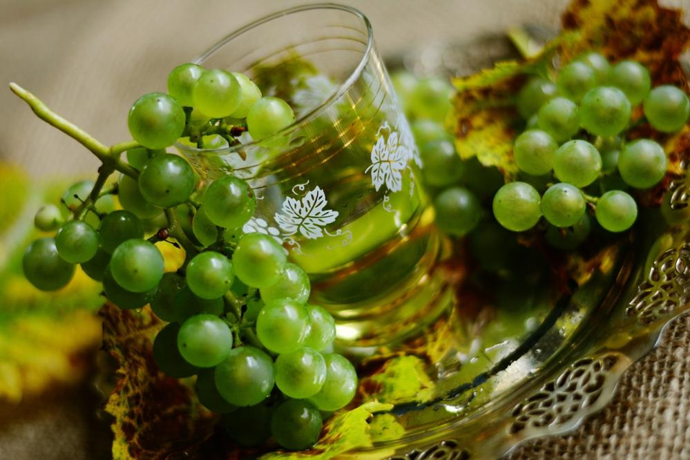 Le vin blanc au Maroc