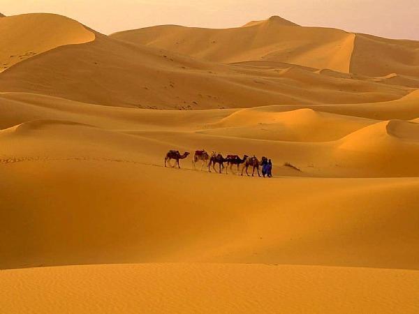 Livres sur le Maroc